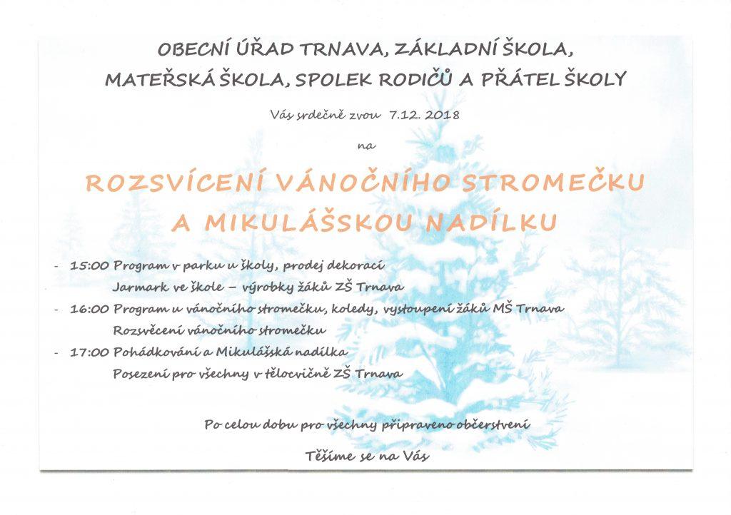 masle29112018